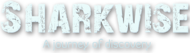 Sharkwise, a journey of discovery